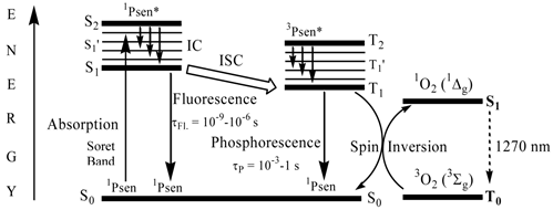 Unique diagnostic and therapeutic roles of porphyrins and a simplified jablonski diagram theranostics image ccuart Image collections