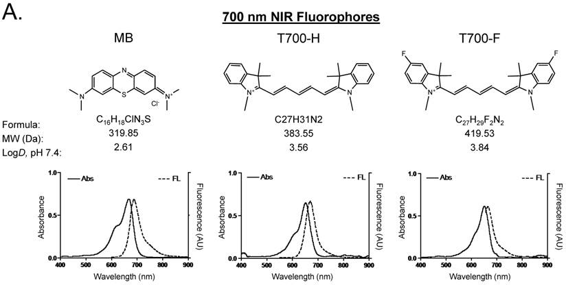 Pancreas Targeted Nir Fluorophores For Dual Channel Image