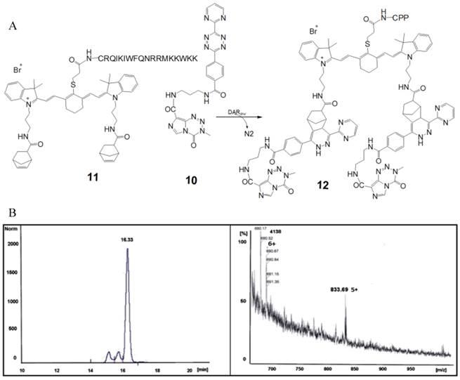 NIR-Cyanine Dye Linker: a Promising Candidate for