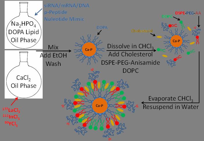 Delta Dt Cs Pb besides C Ff also Fncir G additionally F Large also Conveyor Schematic. on body schematic diagram