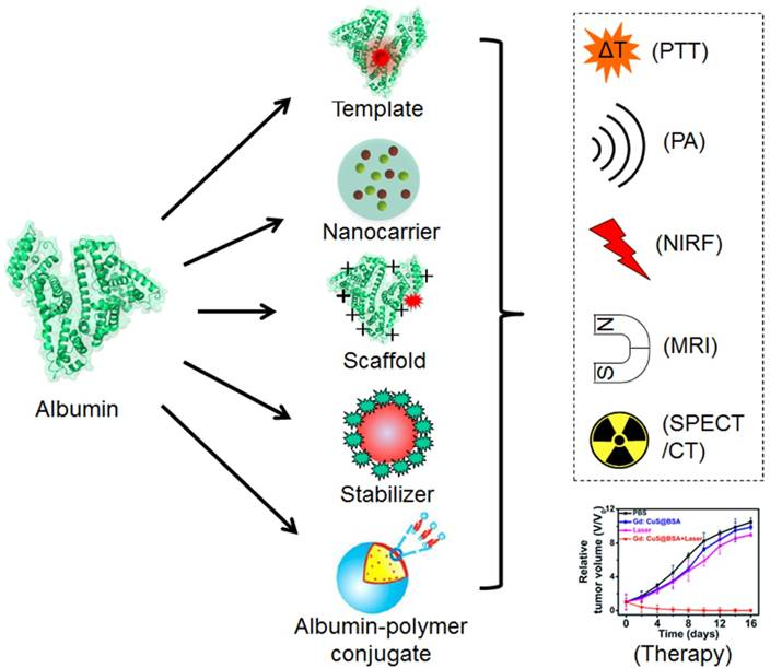 Strategies For Preparing Albumin-based Nanoparticles For