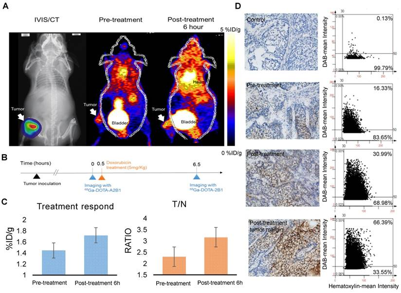 The Use of PET Imaging for Prognostic Integrin α2β1