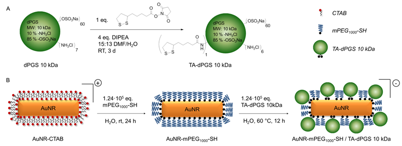 Polyglycerolsulfate Functionalized Gold Nanorods As Optoacoustic Signal Nanoamplifiers For In