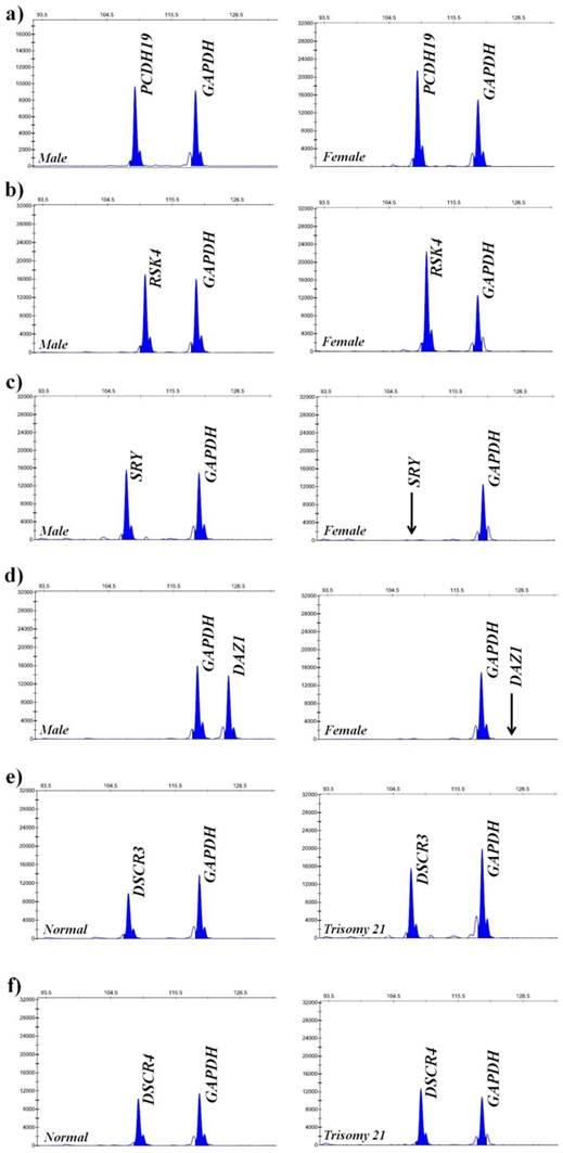 Copy Number Variation Analysis By Ligation