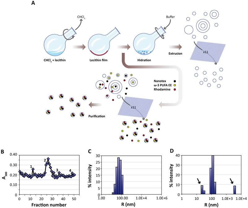 Magnetoliposomes Loaded With Poly Unsaturated Fatty Acids