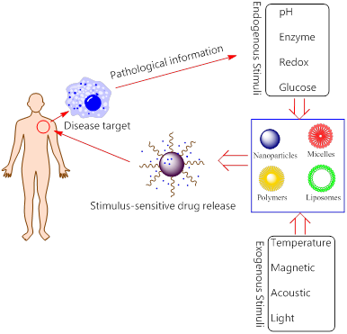 The Smart Drug Delivery System and Its Clinical Potential