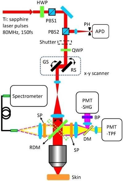 Precise Spatially Selective Photothermolysis Using