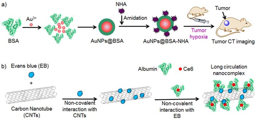 Strategies For Preparing Albumin Based Nanoparticles For
