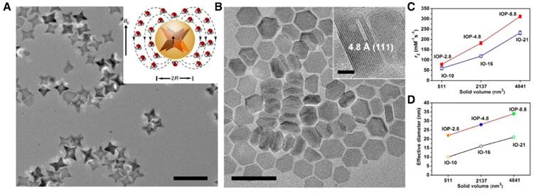 Surface impact on nanoparticle-based magnetic resonance