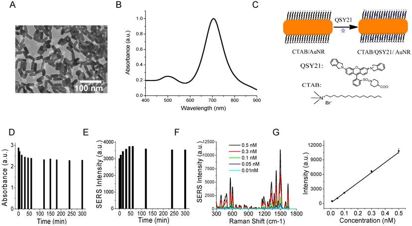 Molecular Detection and Analysis of Exosomes Using Surface