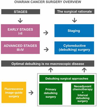 Imaging And Therapy Of Ovarian Cancer Clinical Application Of Nanoparticles And Future Perspectives