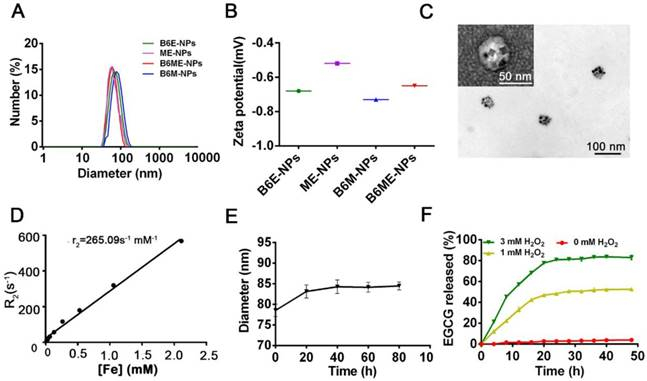 """Cell-addictive"""" dual-target traceable nanodrug for"""