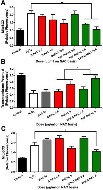Targeting Mitochondrial Dysfunction and Oxidative Stress in
