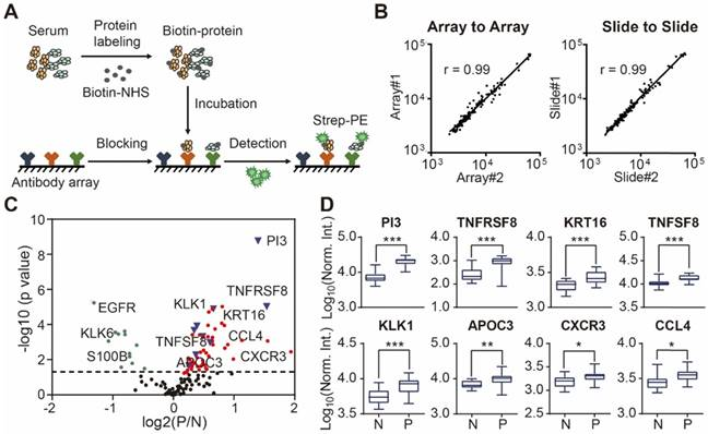 In-depth serum proteomics reveals biomarkers of psoriasis severity