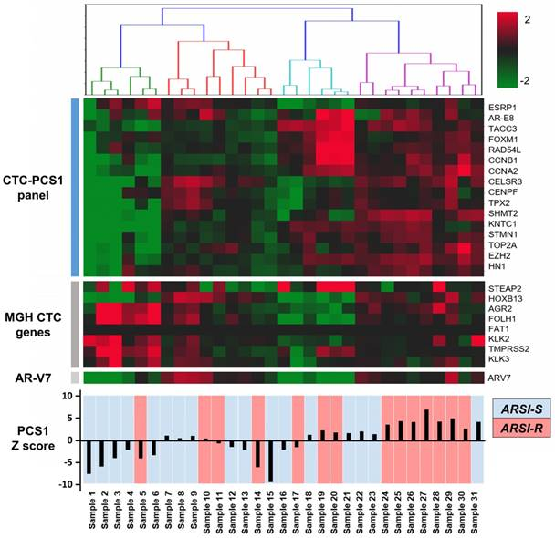 A Circulating Tumor Cell-RNA Assay for Assessment of