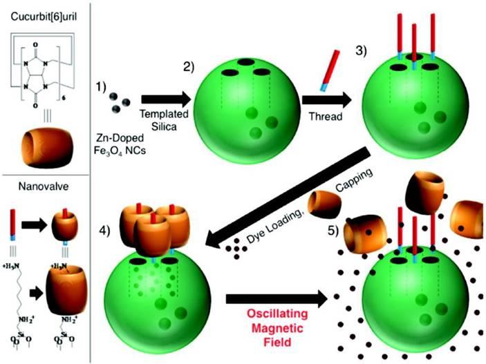 Supramolecular Nanomachines as Stimuli-Responsive Gatekeepers on