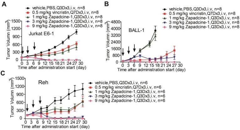 A novel anti-DR5 antibody-drug conjugate possesses a high-potential
