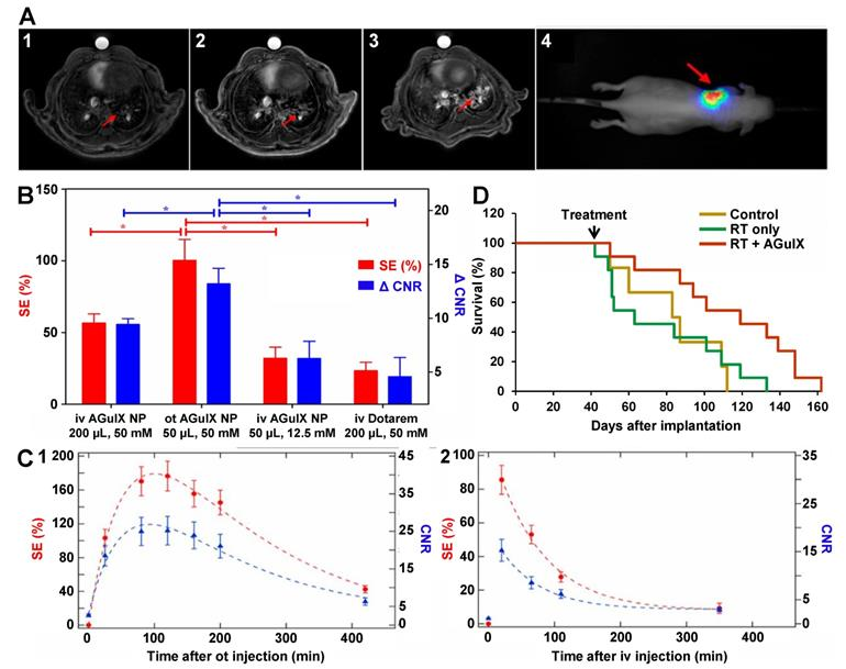 YU238259 exhibits synergism with radiotherapy and DNA
